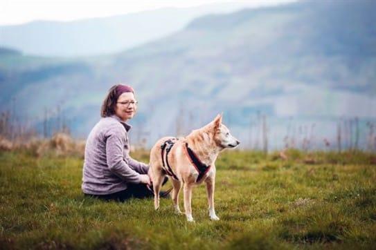 Einsteigerkurs Seminare Hundekrankheiten Naturheilkunde