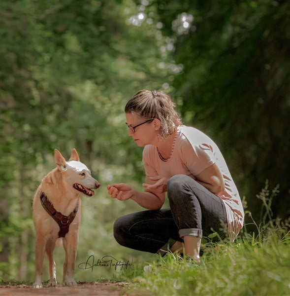 Was macht ein Tierheilpraktiker Tierheilpraktiker werden